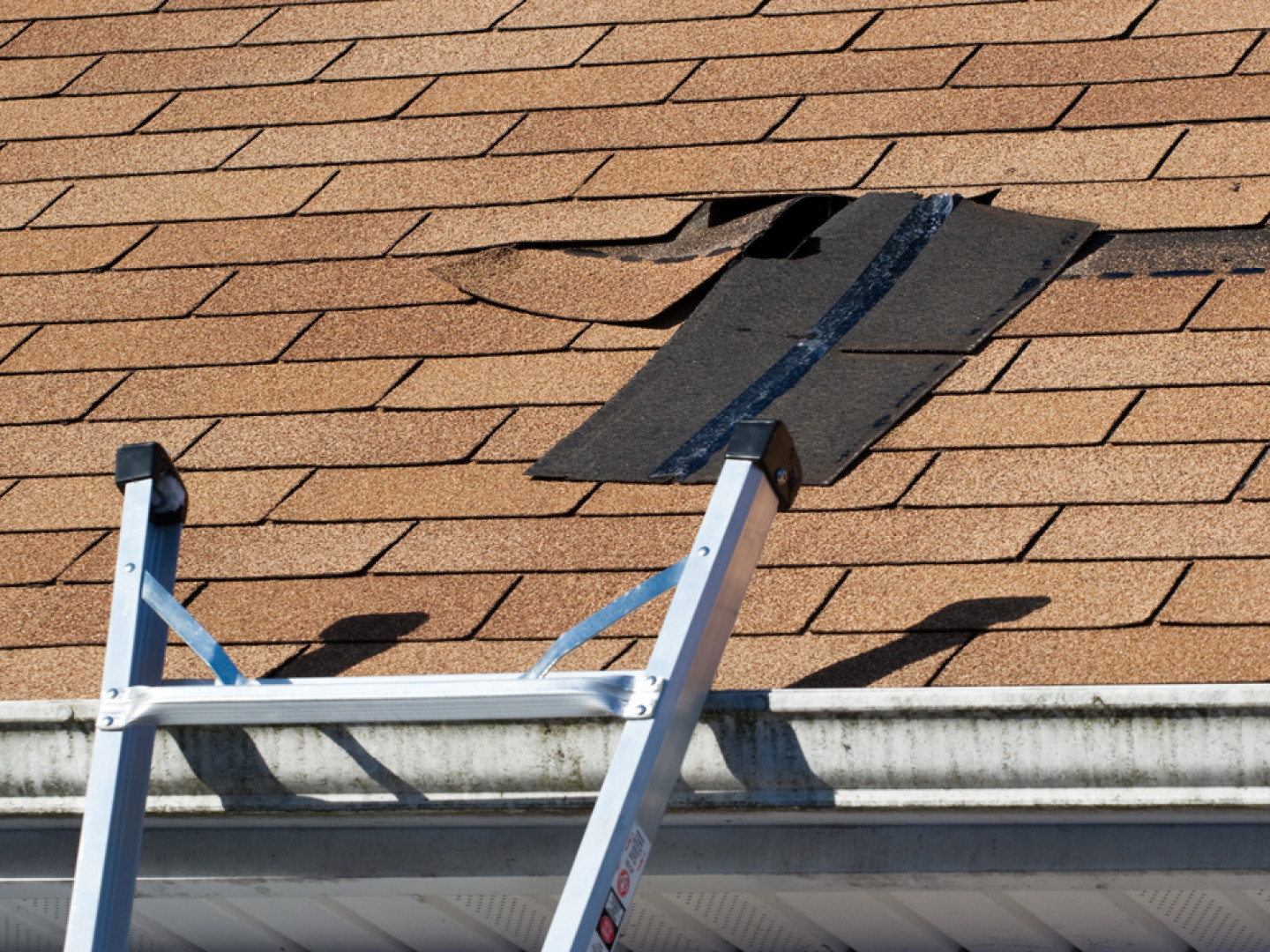 Signs your need professional roof repair